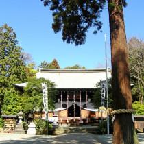 「比々多神社」で古社の歴史と癒やしにふれる〜