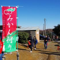 会員専用*2017年みかん狩り&里芋掘りイベント写真